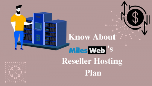 Know About MilesWeb's Reseller Hosting Plan